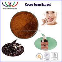Free sample ! HACCP Kosher FDA China manufacturer R&D theobromine cocoa polyphenol low fat cocoa powder