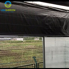 Agricultural Film Covered Multi Span Greenhouse