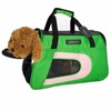 2016 new developement green luxury nylon pet carrier cat dog bag carrier
