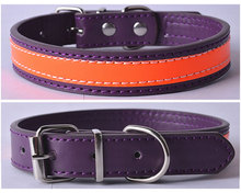 Soft Padded Leather Dog Collar Buckle Pet Leash