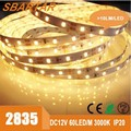 5M Stickable 12V Waterproof IP65 Warm White SMD 2835 LED Rope Lights With CE ROHS