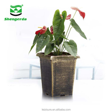 garden rose flower decoration flower pot hydroponic growing systems