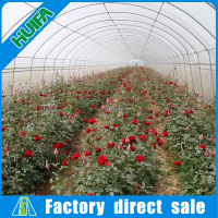 Fabulous Plastic Greenhouse Tent Hot Selling