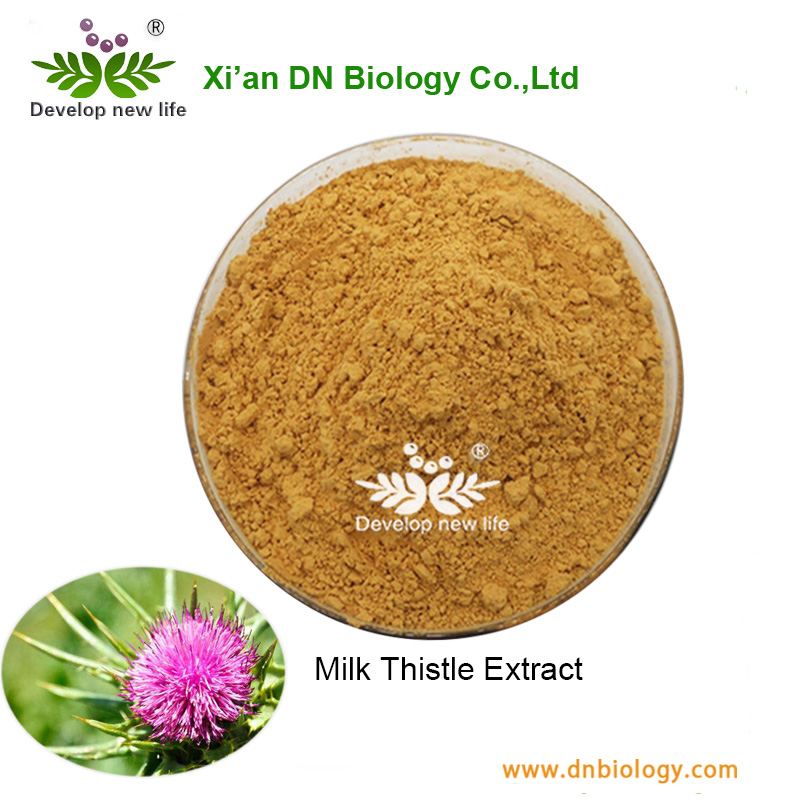 Competitive Price With Health Product Thistle Milk Extract Powder