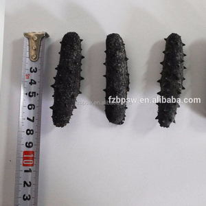 China Seafood Natural Dried Prickly Sea Cucumber in Different Sizes
