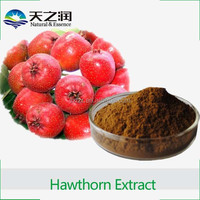 High Quality Chinese Hawthorn Extract Powder / Hawthorn Berry Fruit P.E