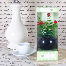 Flower pot reed aroma diffuser for gift set