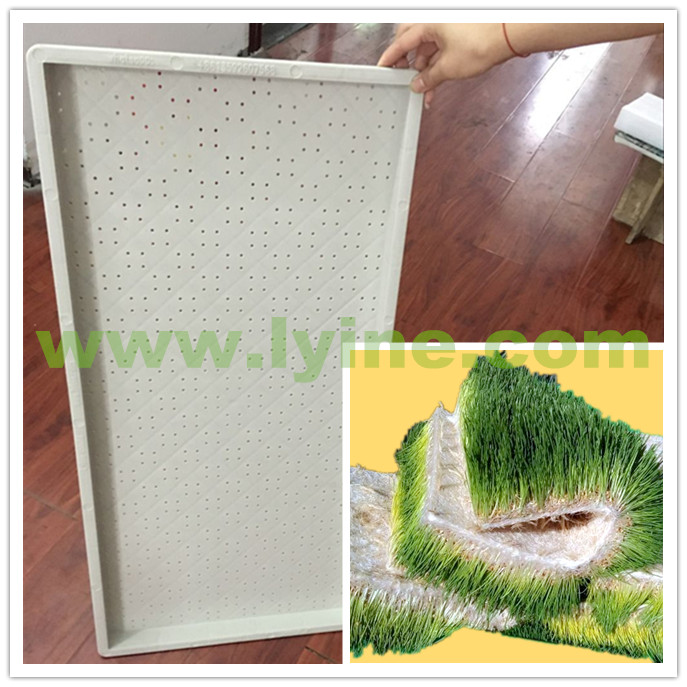 Green grass seedling trays for sale with food grade material