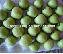 2014 china green apple price and specifications
