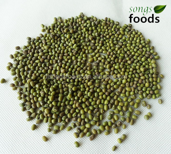 Green Mung Bean with Best Quality