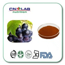 100% Nature High ORAC Value Grape Seed Extract/Pure OPC 95 98 /Polyphenol 70 80