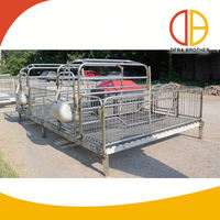 CHINA Best Selling Products Pig Pen Design