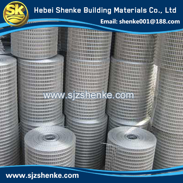 gold supplier china square chicken wire mesh