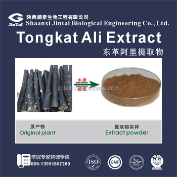 top quality 100:1 tongkat ali herbal extract