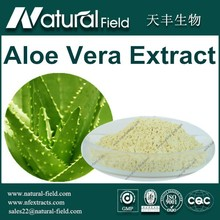 Raw Aloe Vera Supplier Of Professional Manufacturer