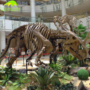 KANOSAUR0648 Dinosaur Park Life Size Skeleton Model Artificial Museum Indoor
