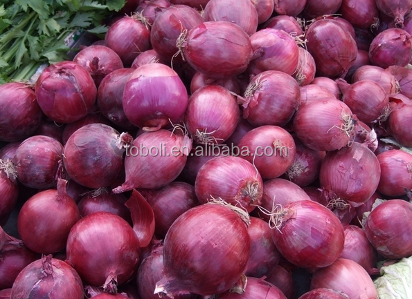 2016 vegetable market price hot sale Fresh red onion