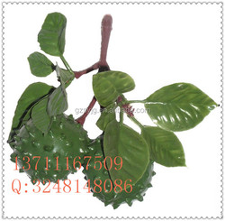 China factory artificial fruit