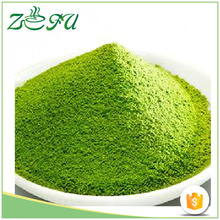Organic Matcha Green Tea Powder with Private Label
