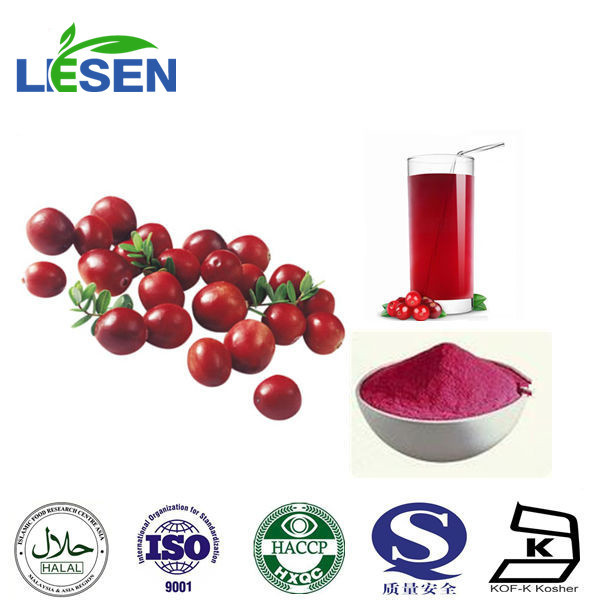 100% Natural Cranberry Extract 25% Proanthocyanidins