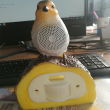China plastic ultrasonic bird repeller