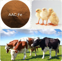 Magnesium Amino Acid Chelate Poultry Feed Additive