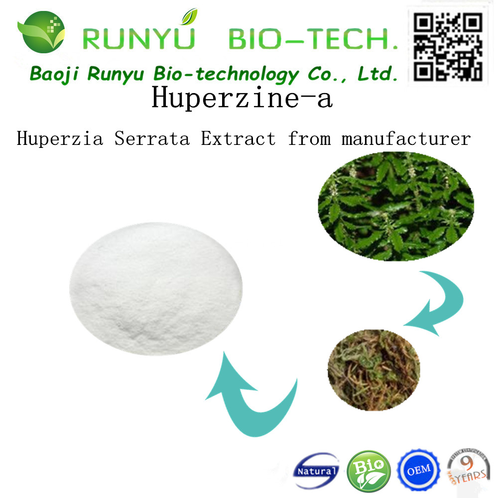 HACCP Factory 100% Authentic Ingredients for Lycopodium Clavatum Extract Huperzine A