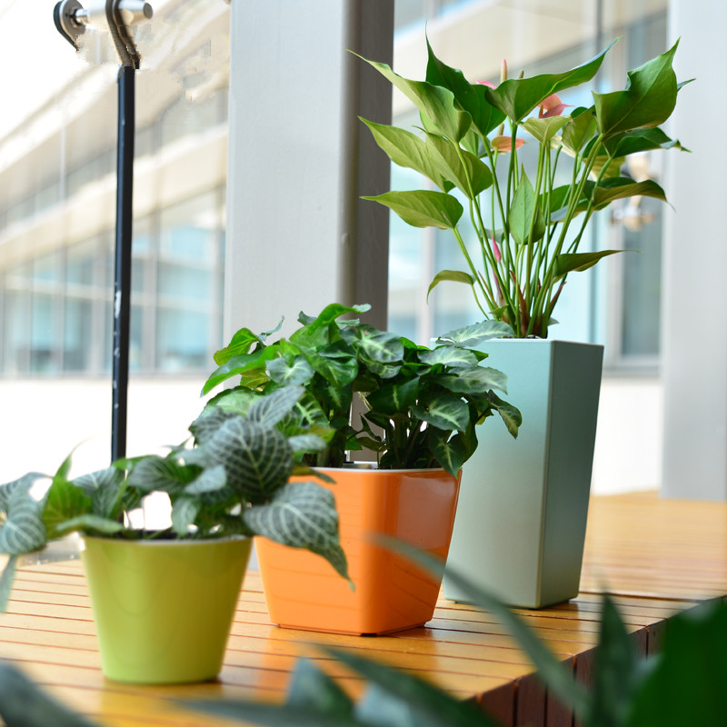 PP Plastic Balcony Self Watering Home