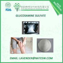 Hot Sell and perfect quality Glucosamine Sulfate Potassium Chloride(2KCL) 99%