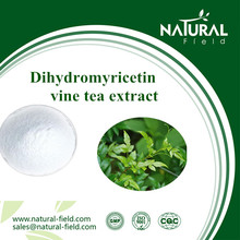 Good reliable manufacture vine tea extract dihydromyricetin CAS:29883-15-6