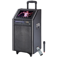 Portable Karaoke Machine For Party