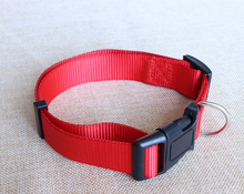 Pets accessories plain nylon dog collar wholesale