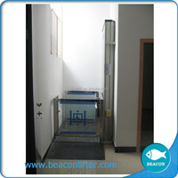 250kg capacity small home lift vertical lift