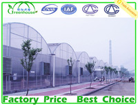 Double Layer Inflation and Film Cover Material Multi Span Greenhouse for Agricultural