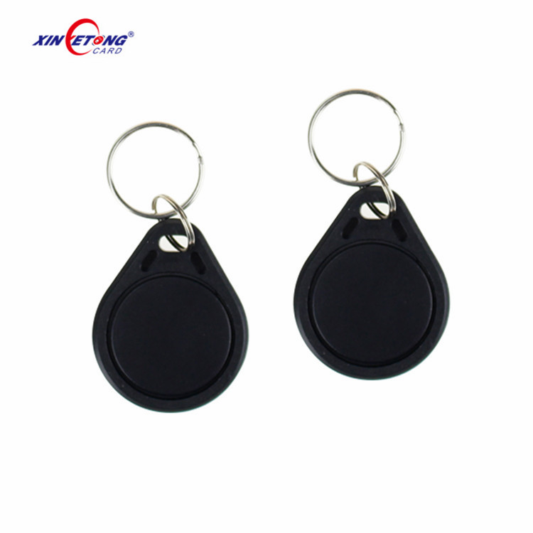 Easy to Carry 125khz EM4200 Chip RFID Key Fob