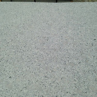 China Cheap Granite Outdoor Garden Parking