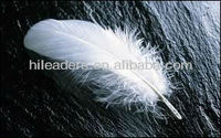 Wholesale Natural Color Goose Feather