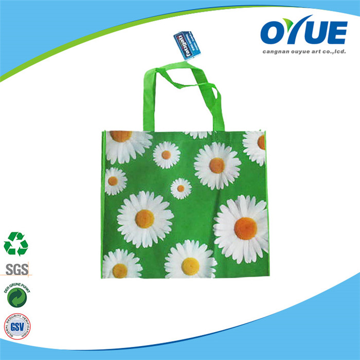 Popular resuable best price shopping non woven bag