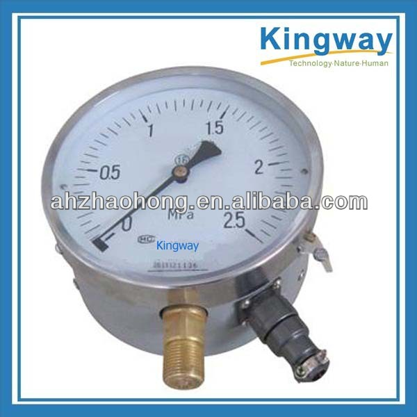 Double bourdon tubes differential pressure gauge