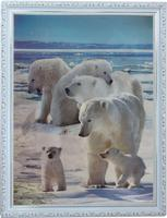 3D Fashion Design Animal Wall Art Wooden Picture Frame In China Alibaba