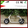 Zhejiang Citycoco Chinese Electric Motorcycle