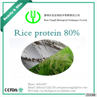 Rice extract protein for Amway protein supplement