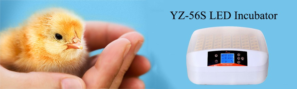 HHD LED Egg Candler Poultry Incubator Machine Automatic Chicken Egg Incubator Model YZ-56S