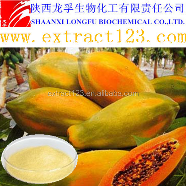 Manufacturer sales bromelain and papain