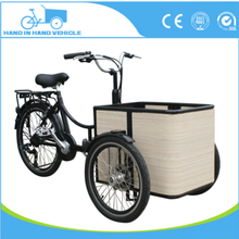 250W Motor Three Wheel Electric Tricycle Customized Mini Cheap Bike for Elder
