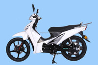 EEC Electric Scooter 1000 Watts (STAR 1000)