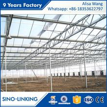 SINOLINK good daylighting Polycarbonate sheet used greenhouse equipment for sale for agricultural