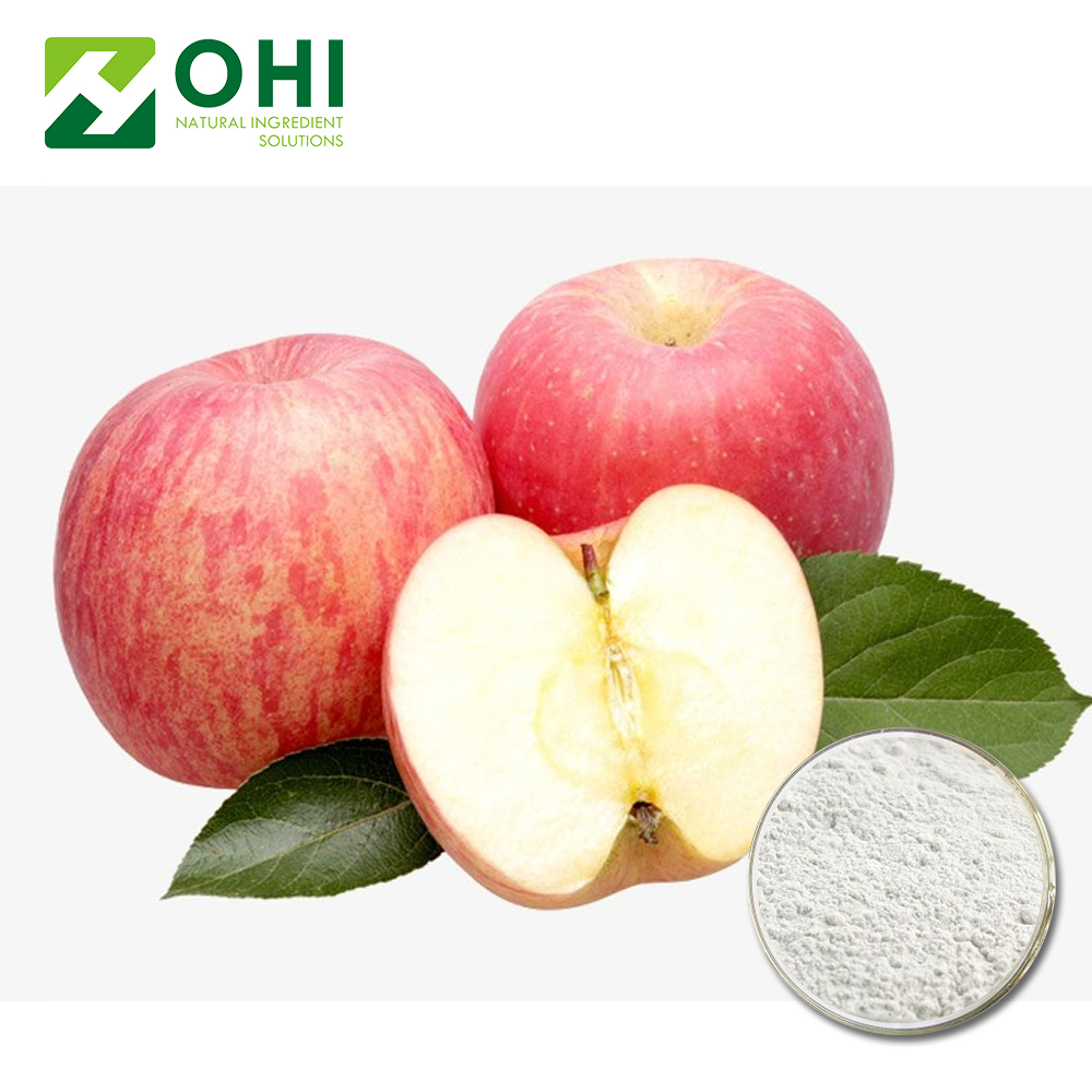 Offwhite HPLC OPC 5% Malusdomestica Extract Powder used for Protecting liver