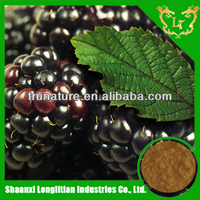 Attention ! ! ! life needed healthy products black raspberry extract/raspberry extract with good quality plus wholesale price