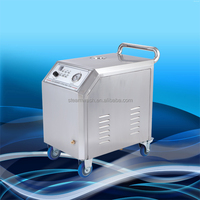 Steam cleaning machine for cars, steam clean for engine